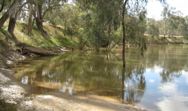Daunt's Bend, Goulburn River at Toolamba, Victoria
